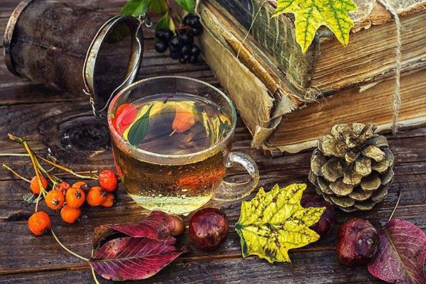 秋天适合喝什么茶?