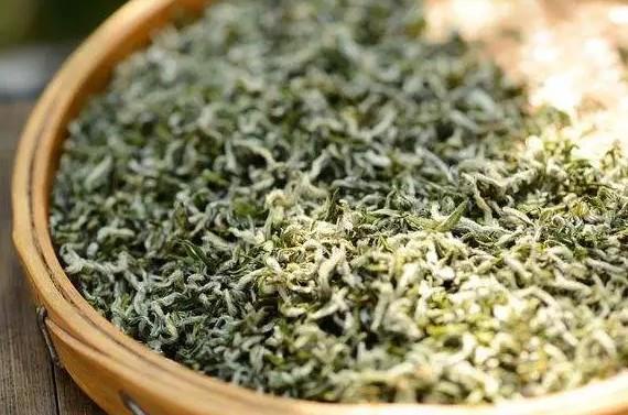 日照绿茶的加工工艺和质量特色!