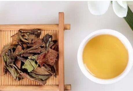 贡眉白茶的饮用禁忌!