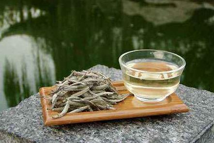 关于老白茶的泡法!