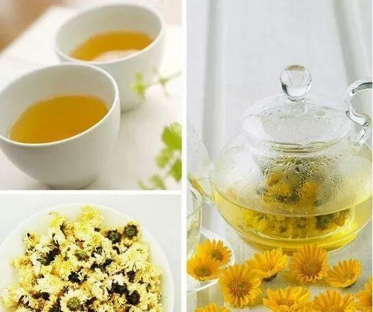 菊花茶清热明目 怎样喝最好
