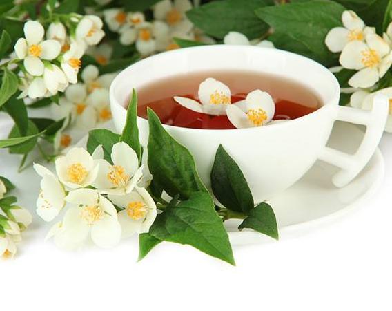 茉莉花茶的功效 喝茉莉花茶需要注意的事项
