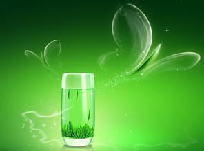 冲泡绿茶用什么器皿