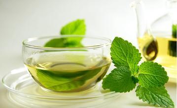 哪类人不适合饮用绿茶