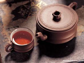 泡普洱茶用什么茶壶合适?