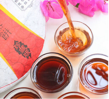 生普洱茶的泡法