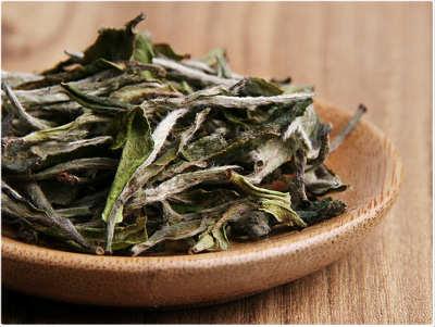 白茶的种类都有哪些