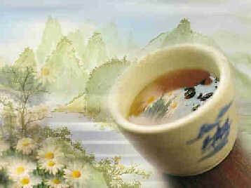 绿茶知识 什么时候喝最好