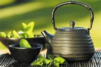 信阳毛尖洗茶