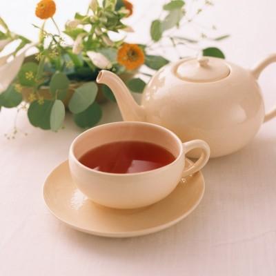 祁门红茶的采摘工艺是怎样的