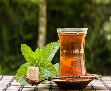 如何冲泡日照绿茶