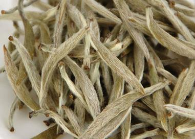 女性喝白茶有什么样的好处?