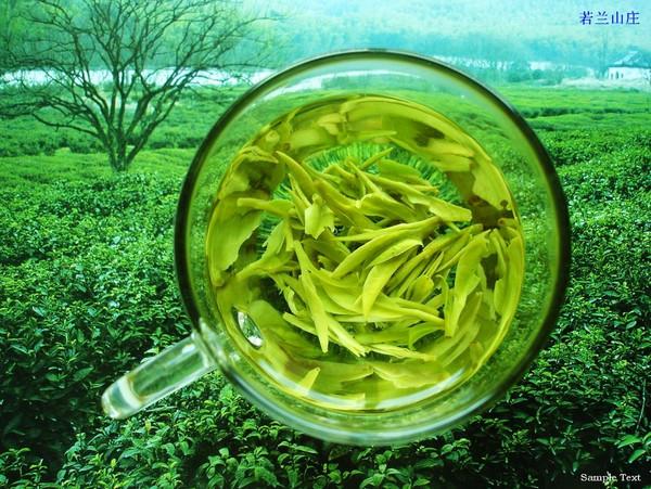 绿茶的作用