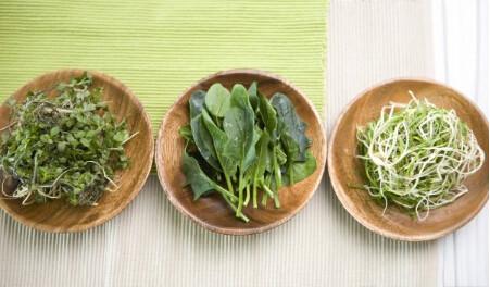 绿茶神奇功效有哪些