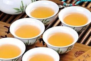 普洱茶生茶是什么?