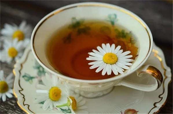 桑叶茶的功效和禁忌