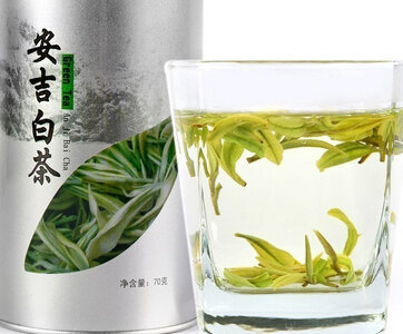 安吉白茶品牌