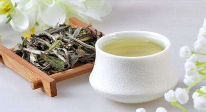 白茶的种类和功效有哪些?
