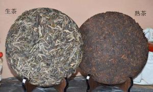 普洱茶生茶和熟茶的区别